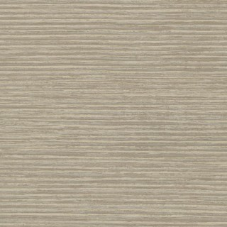 Sketch Twenty3 Wallpaper Reed Collection FRO1041