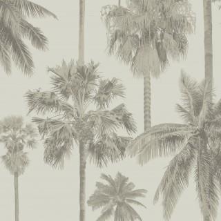 California Palm Wallpaper ML01415 by Sketch Twenty3