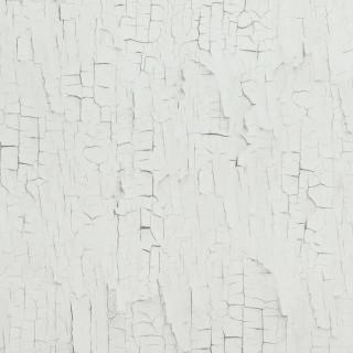 Essentials Wallpaper 218020 by BN Walls