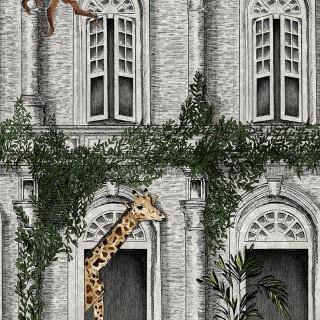 Animal Architecture Wallpaper BMTD001/03A by Brand McKenzie