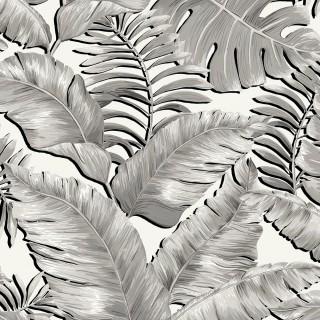 Banana Leaves Max Wallpaper BMTD001/05A by Brand McKenzie