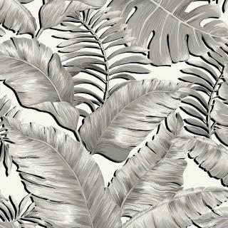Banana Leaves Standard Wallpaper BMTD001/06A by Brand McKenzie
