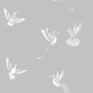 Exotic Birds Wallpaper BMTD001/08B by Brand McKenzie