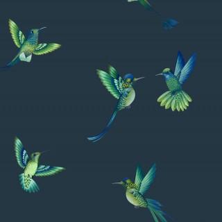 Exotic Birds Wallpaper BMTD001/08C by Brand McKenzie