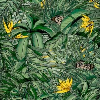 Monkey Forest Wallpaper BMTD001/09B by Brand McKenzie