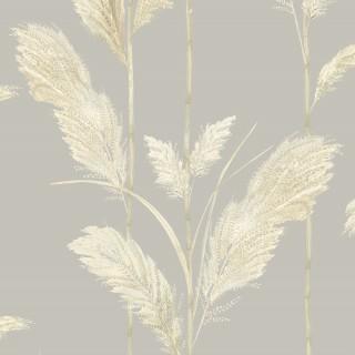 Pampas Grass Wallpaper BMTD001/10B by Brand McKenzie