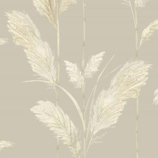 Pampas Grass Wallpaper BMTD001/10C by Brand McKenzie