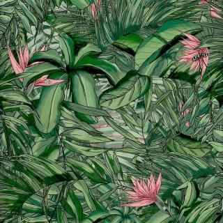Tropical Forest Wallpaper BMTD001/15A by Brand McKenzie