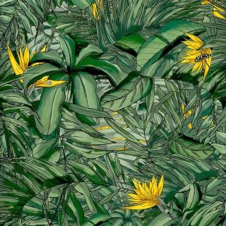 Tropical Forest Wallpaper BMTD001/15B by Brand McKenzie