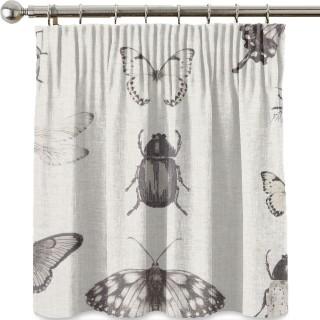 Clarke and Clarke Papilio Fabric F1093/02