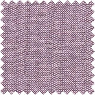 Claro Fabric F1417/01 by Clarke and Clarke