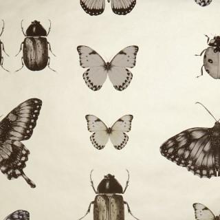 Clarke and Clarke Papilio Wallpaper W0094/01