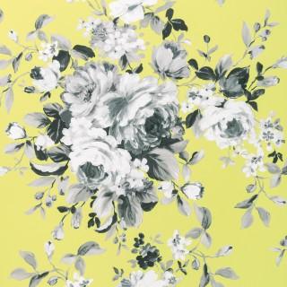 Clarke & Clarke Wallpaper Colony Emeline Collection W0081/01