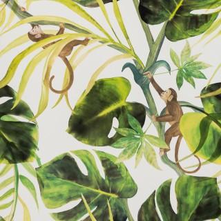 Clarke & Clarke Wallpaper Colony Monkey Business Collection W0083/04