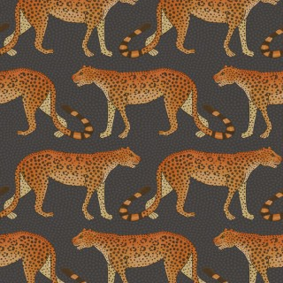 Cole & Son Leopard Walk Wallpaper 109/2008