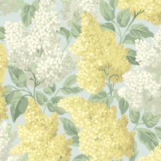 Cole & Son Lilac Wallpaper 115/1003