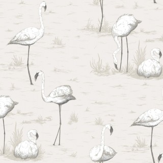 Flamingos Wallpaper 95/8046 by Cole & Son