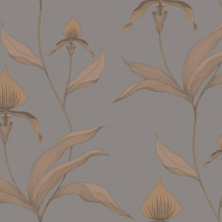 Orchid Wallpaper 95/10056 by Cole & Son