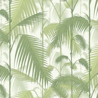 Palm Jungle Wallpaper 95/1001 by Cole & Son