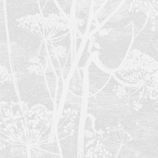 Cole & Son Cow Parsley Wallpaper 112/8027