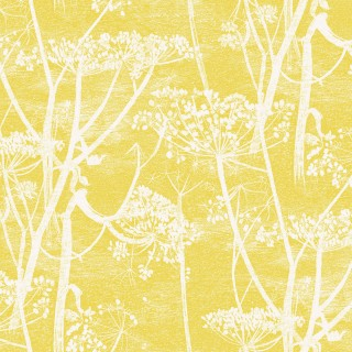 Cow Parsley Wallpaper 66/7051 by Cole & Son