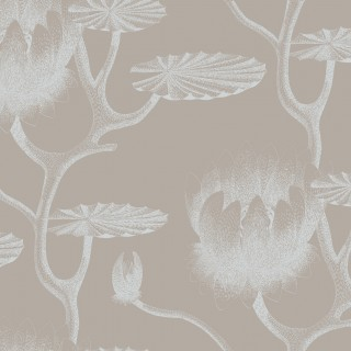 Cole & Son Wallpaper New Contemporary II Lily Collection 69/3110