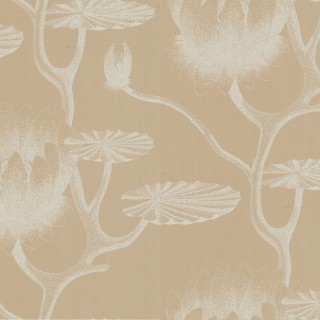 Cole & Son Wallpaper New Contemporary II Lily Collection 69/3113