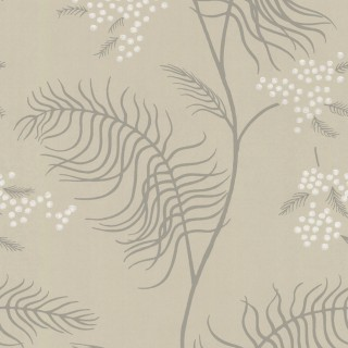 Cole & Son Wallpaper New Contemporary II Mimosa Collection 69/8131