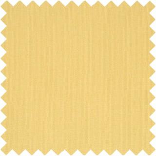 Designers Guild Cara Lismore Fabric FT1976/20