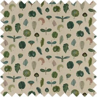 John Derian A Leaf Study Fabric FJD6017/01