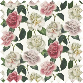 John Derian Camellia Folly Fabric FJD6020/01