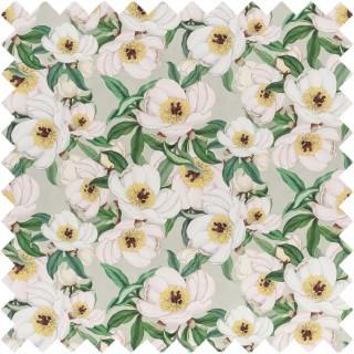 John Derian Paeonia Albiflora Fabric FJD6004/01