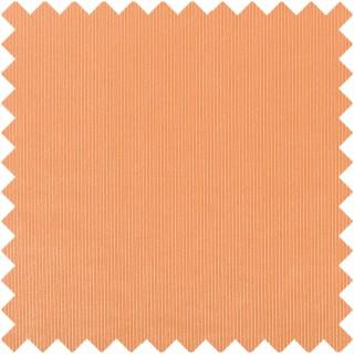 Designers Guild Tammaro Fabric FDG2748/40