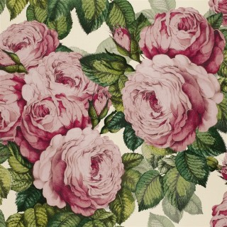 John Derian The Rose Wallpaper PJD6002/02