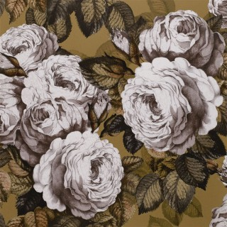 John Derian The Rose Wallpaper PJD6002/04