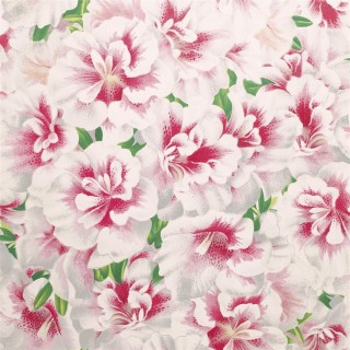 John Derian Variegated Azalea Wallpaper PJD6004/01