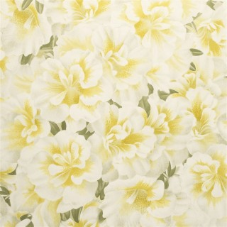 John Derian Variegated Azalea Wallpaper PJD6004/03