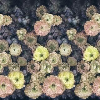 Le Poeme De Fleurs Panel Wallpaper PDG1107/02 by Designers Guild