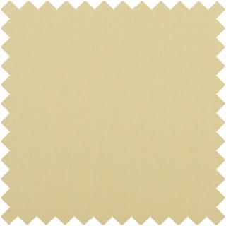 Baker Lifestyle Carnival Plain Fabric PF50420.814