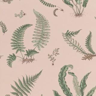 Ferns Wallpaper BW45044.11 by GP & J Baker
