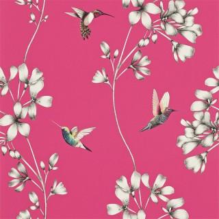 Amazilia Wallpaper 111058 by Harlequin