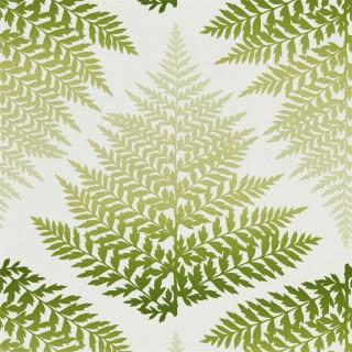 Filix Wallpaper 111378 by Harlequin