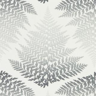 Filix Wallpaper 111380 by Harlequin