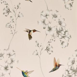 Amazilia Wallpaper 112606 by Harlequin