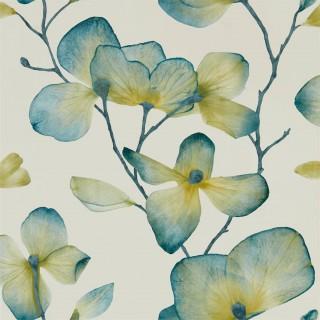Kienze Wallpaper 111957 by Harlequin