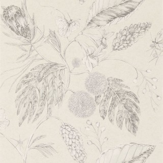 Amborella Wallpaper 111220 by Harlequin