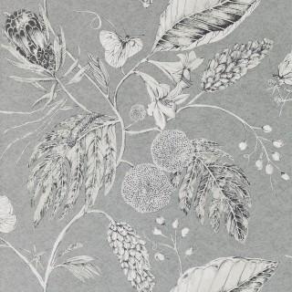 Amborella Wallpaper 111223 by Harlequin