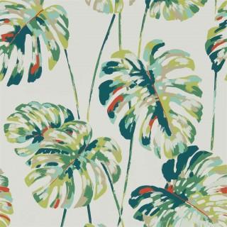 Kelapa Wallpaper 111753 by Harlequin