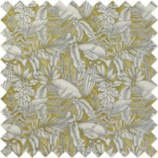 Caicos Fabric CRAU/CAICOKIW by iLiv