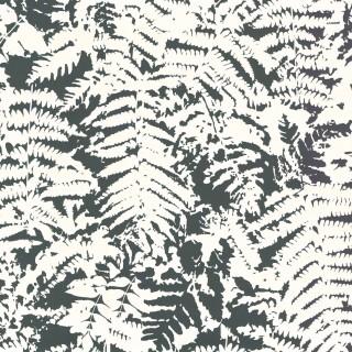 Fern Wallpaper 0280FEOFFBL by Little Greene